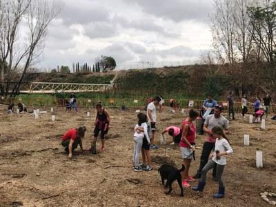 Casi 200 vecinos vecinos se han sumado al llamamiento de la Asociación Arroyo Verde y el Ayuntamiento comenzar la reforestación de la zona quemada el pasado junio