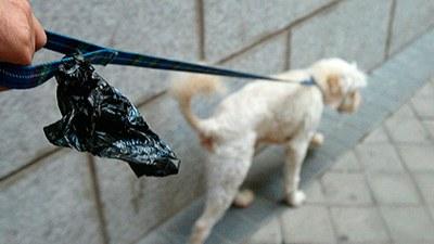 Si tienes mascota, recuerda tu responsabilidad con la limpieza de Arroyomolinos