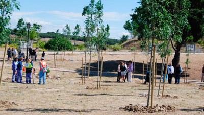 """El sábado 5 de noviembre vuelve a Arroyomolinos la campaña """"Un niño un árbol"""""""
