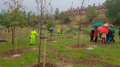 """Campaña especial """"Un niño un árbol para todos"""" para los pequeños nacidos entre 2007 y 2015"""
