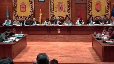 Pleno ordinario del 31 de marzo de 2016